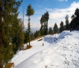 Book your round trip cab service in Shimla