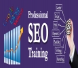 SEO Training in Noida – APEX TGI