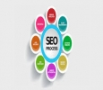 Best SEO Services provider company in Jaipur - Compusys e So