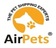Best Pet Transport Services in Delhi, India