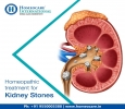 Homeopathy Treatment for Kidney Stones - Homeocare