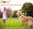 Buy Dog Kennel at Best Price on AirPets