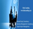 Delta Consulting- Study Abroad, Business Management, Export