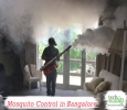 TechSquadTeam offers reliable mosquito control in Bangalore